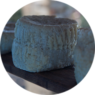 Τζιώτικα τυριά